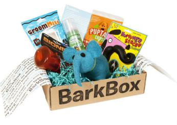 barkbox-dog-subscription-1.png